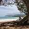 Hawii-4048.jpg